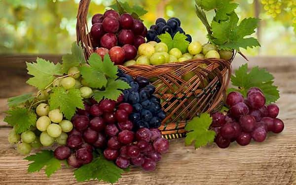 khavas angoor - میوه هایی با قند بالا: مراقب قند زیاد میوه ها باشید!